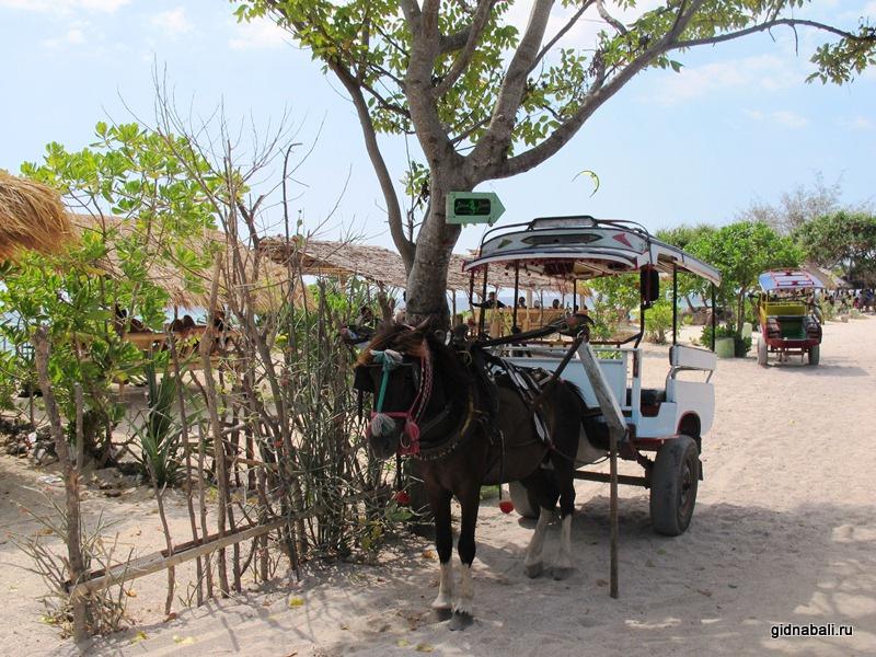 Транспорт на островах Гили