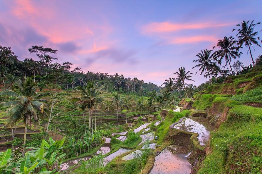 фото отдых на бали